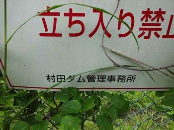 村田ダム証拠.jpg