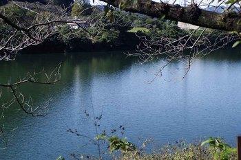PLMAX湖面.jpg