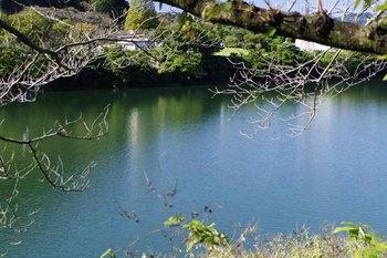 PLMIN湖面.jpg